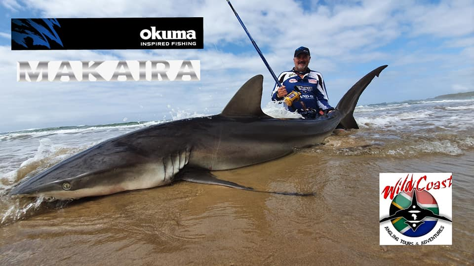 Owen Richter with a Grey Shark caught on T-Line