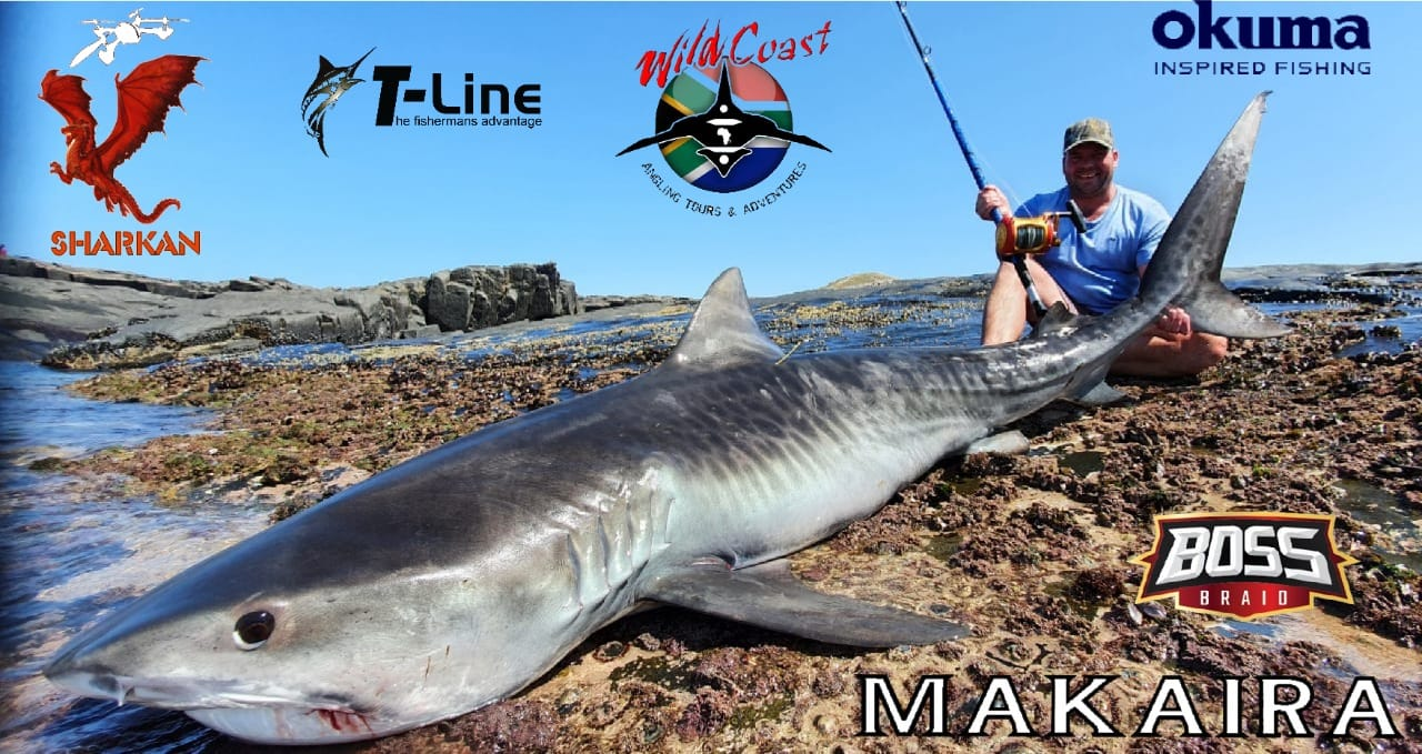 Theunis with a Tiger shark caught on T-Line with WCA Tours